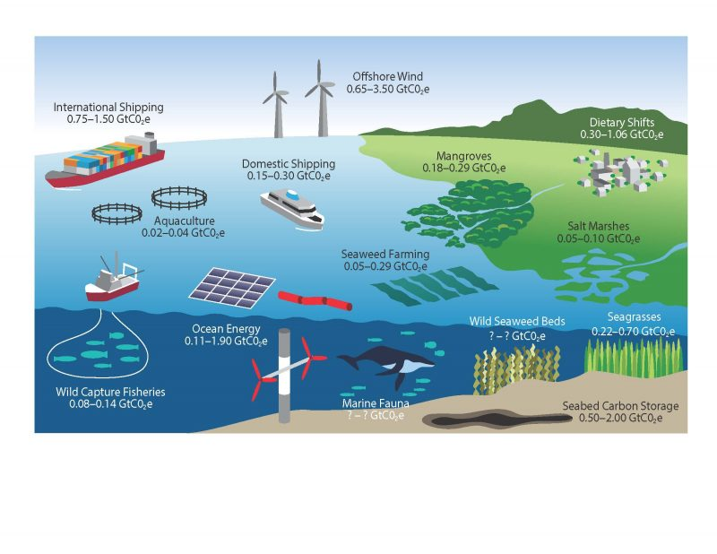 Chopin 2019 International Aquafeed column 13 1910 Climate change and ocean-based climate action